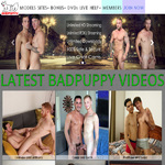 Bad Puppy Promo Id