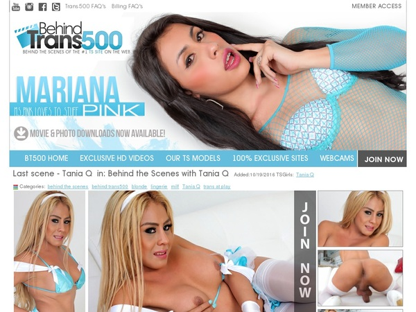 Free Account To Behind Trans 500