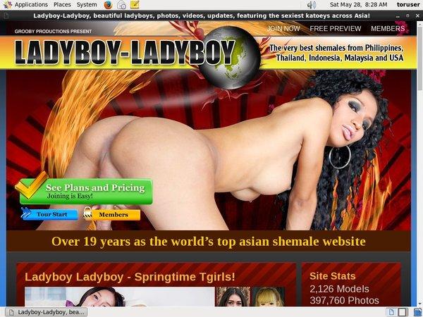 Free Ladyboyladyboy Videos