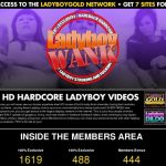 Ladyboy Wank Videos