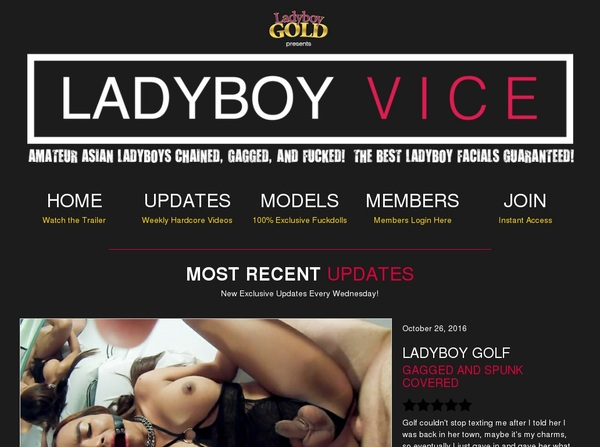 Ladyboyvice.com Premium Logins