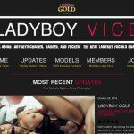 Ladyboyvice.com Sale Price