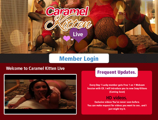 Live Kitten Caramel Membership Trial