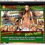 Premium Latinshemales Site Rip