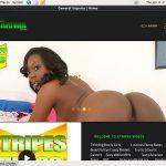 Stripes Videos Site Rip Link