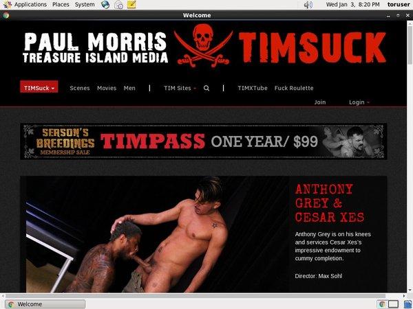 Timsuck.com Babes