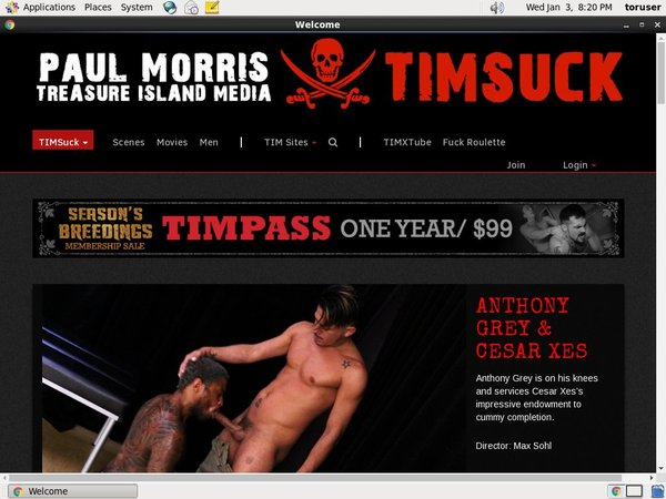 Timsuck Accounts Password