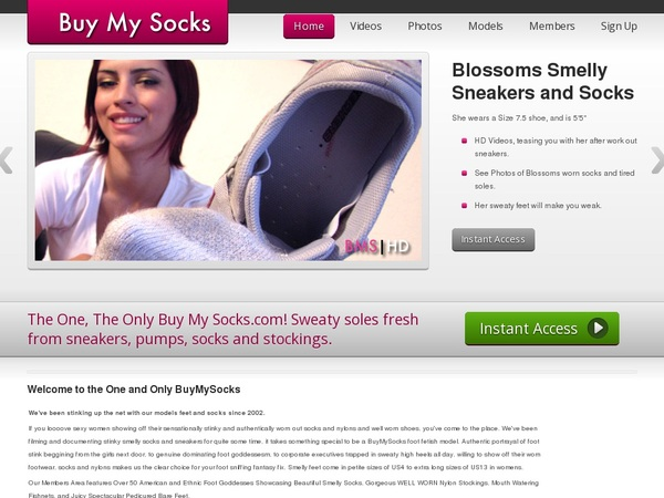 Buymysocks Galleries