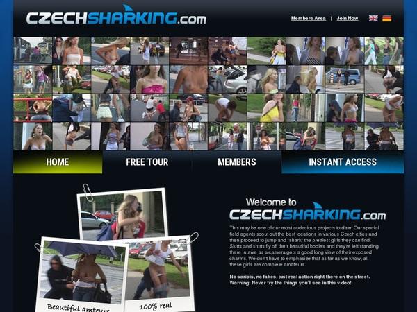 Czechsharking 注册帐号