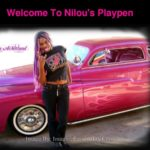 Working Nilous Play Pen Pass