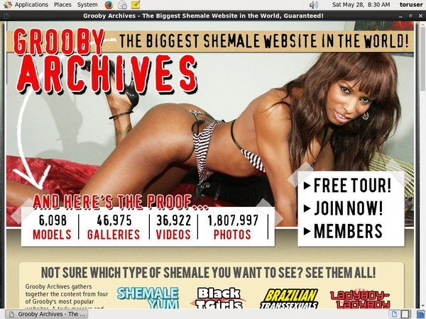 Working The Grooby Archives Login